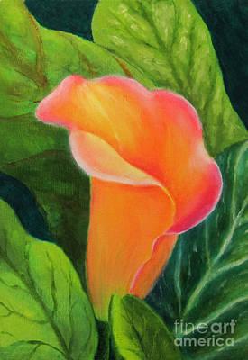Painting - Jill's Cala Lily by Elizabeth Oertel