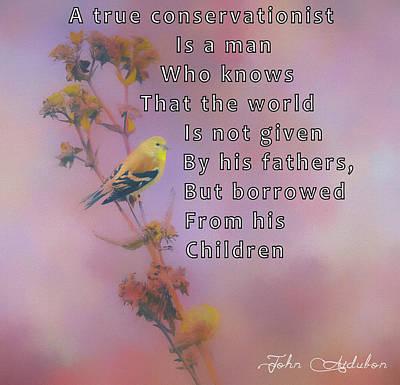 Mixed Media - John Audubon Quote by Dan Sproul
