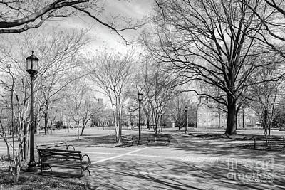 Photograph - Johns Hopkins University Campus Landscape by University Icons