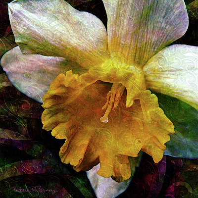 Digital Art - Jonquil by Barbara Berney