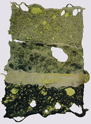 Relief - Joomchi 3 by Susan Avishai