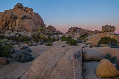 Photograph - Joshua Tree Boulders by Matthew Irvin
