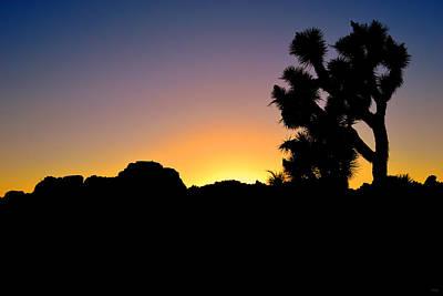 Photograph - Joshua Tree National Park Sunset by Glenn McCarthy Art and Photography