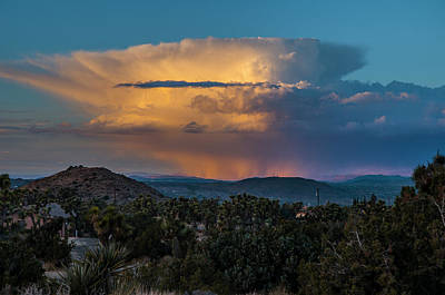Photograph - Joshua Tree Thunderhead by Matthew Irvin
