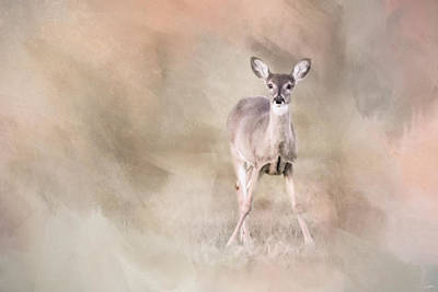Photograph - Joyful Little Fawn 4  by Jai Johnson