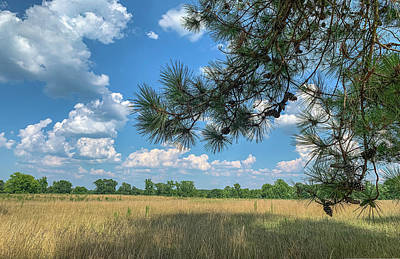 Photograph - July Sky 2019-07 01 Panorama by Jim Dollar