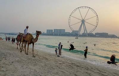 Photograph - Jumeirah Beach, Dubai Marina, Dubai, United Arab Emirates by Jamie Baldwin