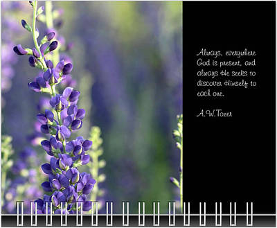 Photograph - June Inspirational 2019 Calendar Preview by Joni Eskridge