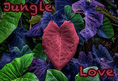 Photograph - Jungle Love Type by William Ferry
