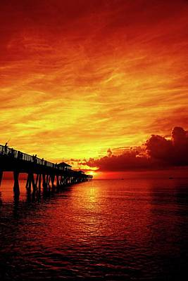 Photograph - Juno Pier 2 by Steve DaPonte