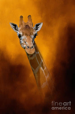 Wildlife Mixed Media - Just A Look by Marvin Spates