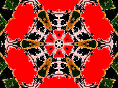 Digital Art - Kaleidoscope Abstract 11b by Artist Dot