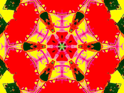 Digital Art - Kaleidoscope Abstract 11c by Artist Dot