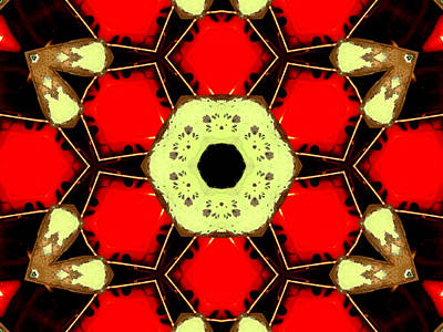 Digital Art - Kaleidoscope Abstract 12 by Artist Dot