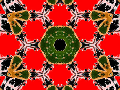 Digital Art - Kaleidoscope Abstract 12b by Artist Dot