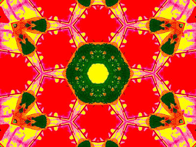 Digital Art - Kaleidoscope Abstract 12c by Artist Dot