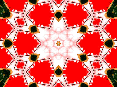 Digital Art - Kaleidoscope Abstract 13a by Artist Dot
