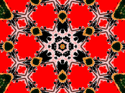 Digital Art - Kaleidoscope Abstract 13b by Artist Dot