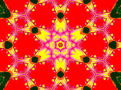 Digital Art - Kaleidoscope Abstract 13c by Artist Dot