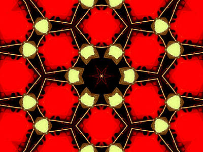 Digital Art - Kaleidoscope Abstract 14 by Artist Dot