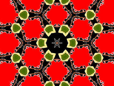 Digital Art - Kaleidoscope Abstract 14a by Artist Dot