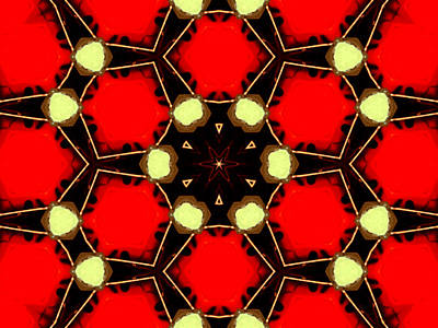 Digital Art - Kaleidoscope Abstract 17 by Artist Dot