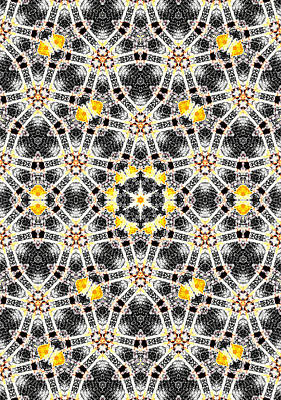 Digital Art - Kaleidoscope Abstract Pattern 8 by Artist Dot