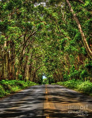 Keith Richards - Kauai South Shore Tree Tunnel Eucalyptus Tree Landscape Art  by Reid Callaway
