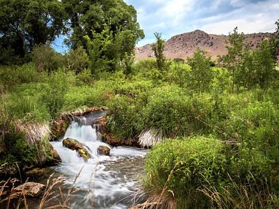 Photograph - Keith Memorial Cascade Falls Black Hills South Dakota I by Patti Deters