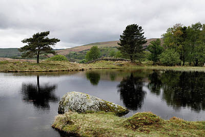 Photograph - Kelly Hall Tarn by Nicholas Blackwell
