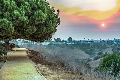 Photograph - Kenneth Hahn State Recreation Area by Alex Grichenko