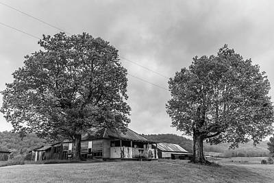 Photograph - Kentucky Farm With Trees  by John McGraw