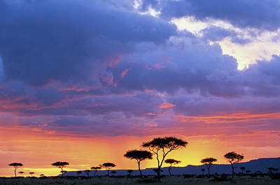 Scenic Photograph - Kenya, Masai Mara Game Reserve, Storm by Paul Souders