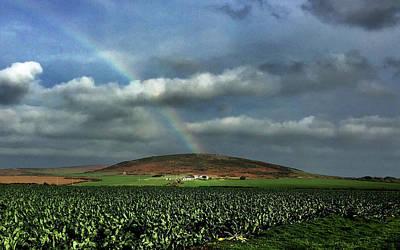 Digital Art - Kerrow In Rainbow by Julian Perry
