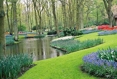Photograph - Keukenhof Gardens by Susie Rieple