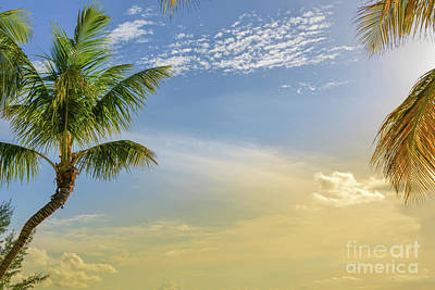 Photograph - Key Largo Florida Sunset by Olga Hamilton