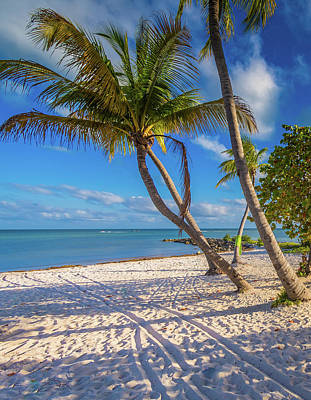 Robert Bellomy Royalty-Free and Rights-Managed Images - Key West Florida by Robert Bellomy