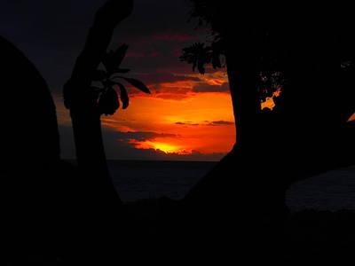 Impressionist Landscapes - Kihei sunset Kam 2 by Damon Boccadoro