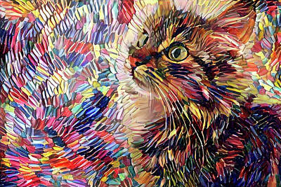 Digital Art - Kiki The Colorful Kitten by Peggy Collins
