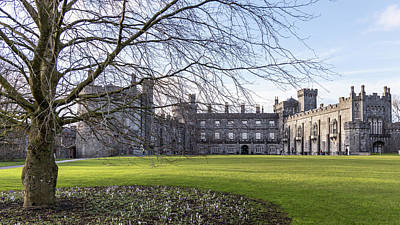 Photograph - Kilkenny Castle Ireland And Tree by John McGraw