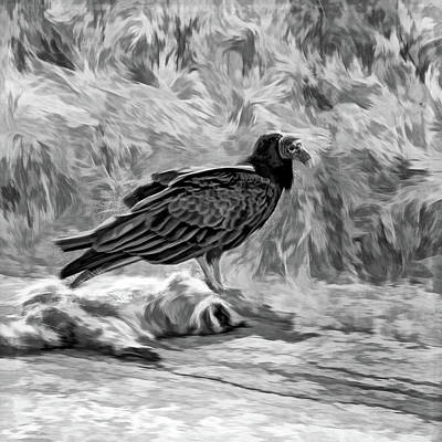 Watercolor Alphabet Rights Managed Images - King Of The Roadkill - Paint bw Royalty-Free Image by Steve Harrington