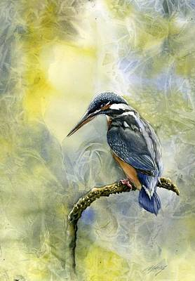 Painting - Kingfisher by Alfred Ng