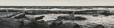 Harbor Scene Wall Art - Photograph - Kings Beach Rocky Panoramic by Jorgo Photography - Wall Art Gallery