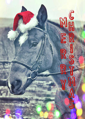 Photograph - Kirby's Merry Christmas Wish by JAMART Photography