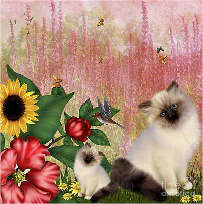 Photograph -  Kittens Garden by Elaine Manley