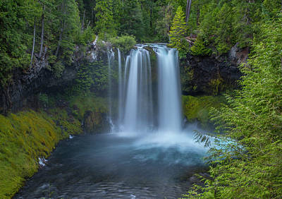 Photograph - Koosah Falls, Summer by Matthew Irvin