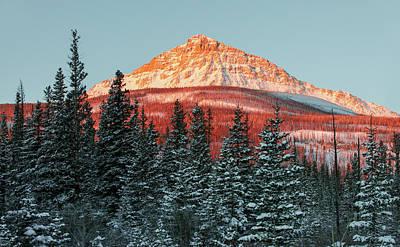 Photograph - Kupunkamint Mountain Morning by Todd Klassy