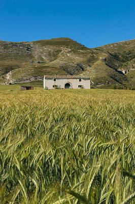 Photograph - La Casa Del Grano by Giuseppe Buccheri