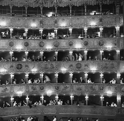General Photograph - La Fenice by Erich Auerbach
