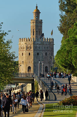 Photograph - La Torre De Oro In Seville by Angelo DeVal
